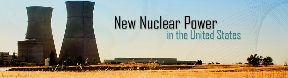New Nuclear Energy